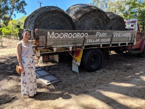 Tại hầm rượu Moorooroo